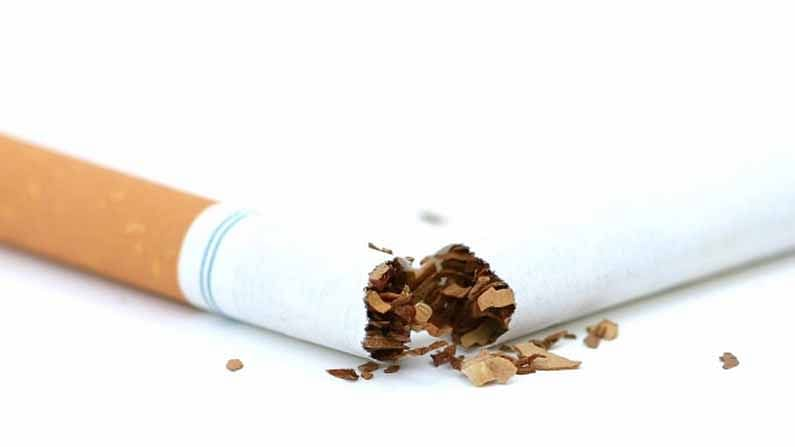 एखाद्याला एकदा तंबाखू किंवा सिगारेटचे व्यसन लागल्यास ते सोडणे फार कठीण आहे. काही लोक एक किंवा दोन दिवस स्वत:वर ताबा ठेवण्याचा प्रयत्न करतात. परंतु, त्यानंतर पुन्हा त्यांना सिगरेटची तलफ येऊ लागते. ही वाईट सवय सोडवण्यासाठी 'हे' घरगुती उपाय नक्की ट्राय करा.