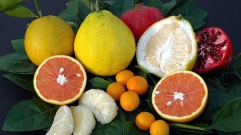 सध्या हिवाळ्याचा हंगाम सुरू आहे. या हंगामात अशी अनेक फळे आहेत, जी तुमच्या शरीरासाठी फायदेशीर ठरतात. या फळांमध्ये मुबलक प्रमाणात व्हिटामिन असते. जे आपल्या शरीराची रोग प्रतिकारकशक्ती वाढवते. हिवाळ्यामध्ये अशा फळांचे सेवन केल्यास तुम्हाला मोठ्या प्रमाणात फायदा होईल.