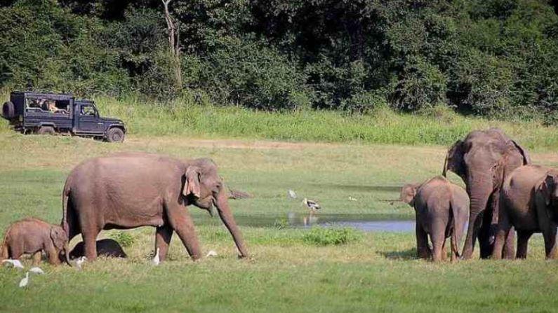 दक्षिणेस भारताच्या शेजारी असलेला देश म्हणजेच श्रीलंका. दोन्ही देशांमध्ये सांस्कृतिक सहभाग आहे. जर आपल्याला सुंदर समुद्र किनारे आणि जंगल पर्वतरांना याचा विलक्षण अनुभव घ्यायचा असेल तर हा देश फिरण्यासाठी परिपूर्ण आहे.