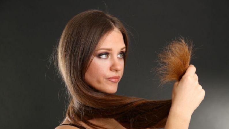 या घरगुती कंडीशनरमुळे आपले केस मुलायमदार आणि सुंदर दिसतील. (टीप – कोणत्याही वैद्यकीय, आयुर्वेदिक सल्ल्याचं पालन करण्यापूर्वी डॉक्टरांचा किंवा तज्ज्ञांचा सल्ला घेणं आवश्यक आहे.)