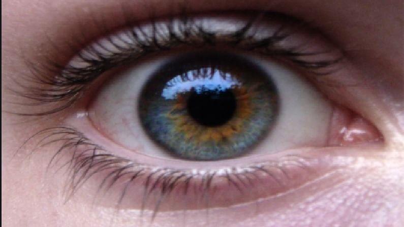 रात्री उशिरापर्यंत स्क्रीन पाहण्याचा परिणाम केवळ डोळ्यांवरच नाही तर त्वचेवरही होतो. त्वचा तज्ज्ञ डॉक्टर सांगतात की हाय एनर्जीवाली एलईडी ब्लू लाइट आपल्या डोळे आणि त्वचेचे नुकसान करते. मग ते एलईडी लाइट बल्ब, कॉम्प्युटर स्क्रीन किंवा फोन असो. झोपेच्या एक तास आधी या सर्व गोष्टींपासून अंतर ठेवल्यास झोप लवकर आणि चांगली येते.