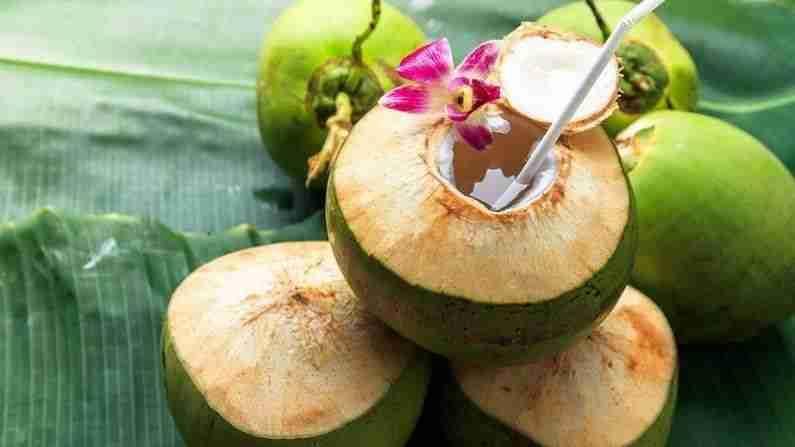 नारळाच्या पाण्यात कॅल्शियम, क्लोराईड आणि पोटॅशियम असते. हे पाचन तंत्र निरोगी ठेवते. नारळाच्या पाण्याचे सेवन केल्यास शरीर थंड राहते.