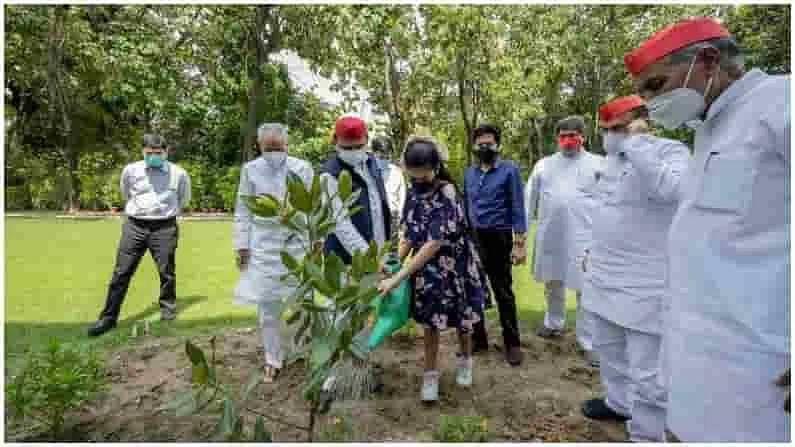 उत्तर प्रदेशचे माजी मुख्यमंत्री आणि सपाचे अध्यक्ष अखिलेश यादव यांनी पर्यावरण दिनाच्या निमित्ताने मॅगनोलियाचे 21 झाडं लावली.