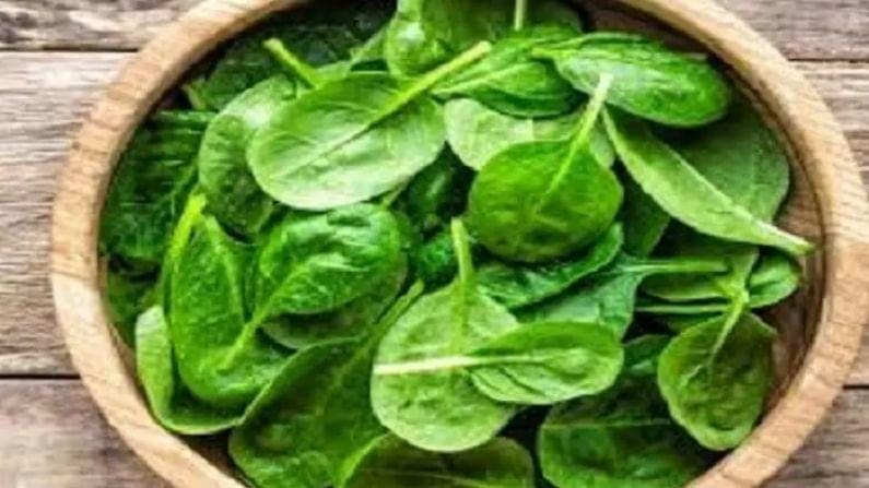 पालक ही एक अत्यंत पौष्टिक हिरवी भाजी आहे. मात्र, पालकाचे सेवन कधाही कच्चे करू नये. कारण त्यामध्ये बग्स आणि बॅक्टेरिया असू शकतात. जे शरीरासाठी हानिकारक ठरू शकतात.