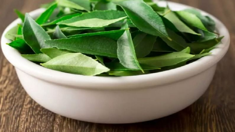 curry leaves 3