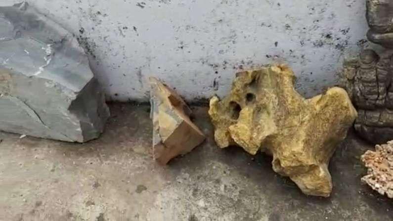 पृथ्वीची उत्पत्त्ती 4.6 अब्ज वर्षापूर्वी झाली. पण सजीवांची उत्पत्ति मात्र 3 ते 4 अब्ज वर्षादरम्यान झाली. जगात काही ठिकाणीच असे जीवाश्म सापडले आहेत, त्यांना स्ट्रोमाटोंलाईट (Stromatolite) असे म्हणतात.