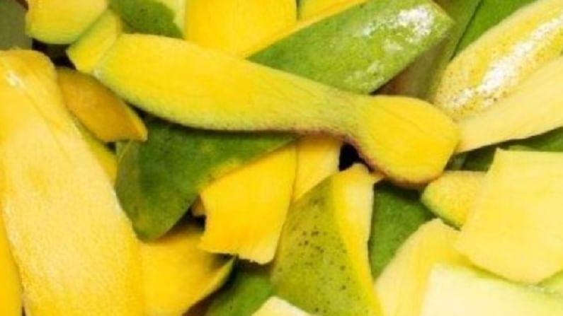 आंब्याप्रमाणेच आंब्याचे साल खाणे आपल्या आरोग्यासाठी खूप फायदेशीर आहे. त्यात अँटीऑक्सिडेंट आणि कर्करोग विरोधी गुणधर्म आहेत. आरोग्याच्या अनेक समस्या दूर करण्यासाठी आंब्याचे साल फायदेशीर आहे.