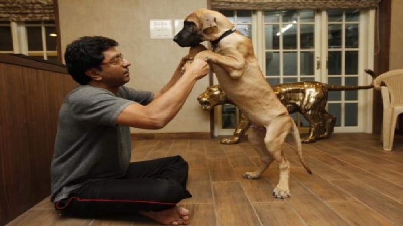 राज ठाकरे हे श्वान प्रेमी आहेत. ग्रेट डेन प्रजातीचा जेम्सही अनेक वर्ष त्यांच्यासोबत होता. परंतु वयोमानानुसार जेम्सने काल अखेरचा श्वास घेतला. लाडक्या कुत्र्याच्या निधनाने राज ठाकरेंना धक्का बसला आहे.