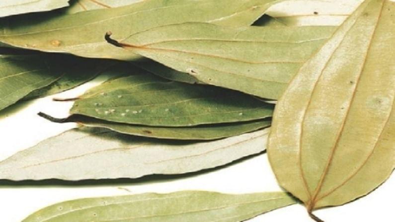 Bay leaf 5