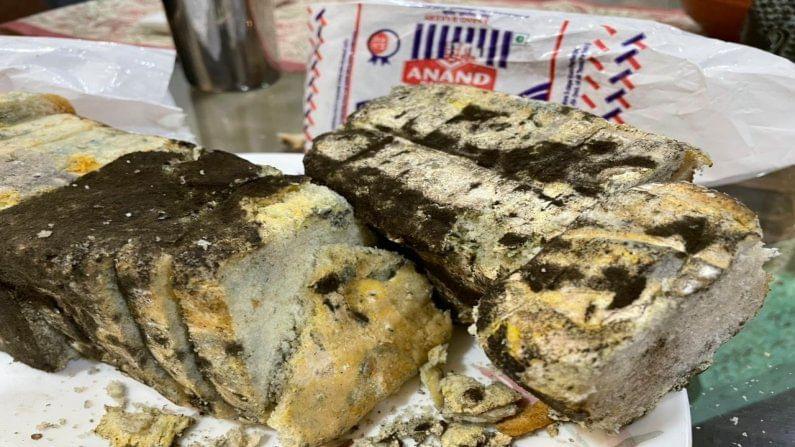 अकोला शहरातील एका नामांकित बेकरीने चक्क बुरशीजन्य ब्रेड विकल्याची धक्कादायक माहिती समोर आली आहे. याप्रकरणी तक्रार दाखल करण्यात आली आहे.