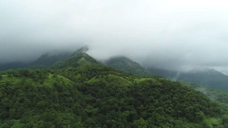 कुंभवडे येथील निसर्गाचं मनमोहक आणि देखणं रुप प्रत्येकाला भुरळ घालत आहे.