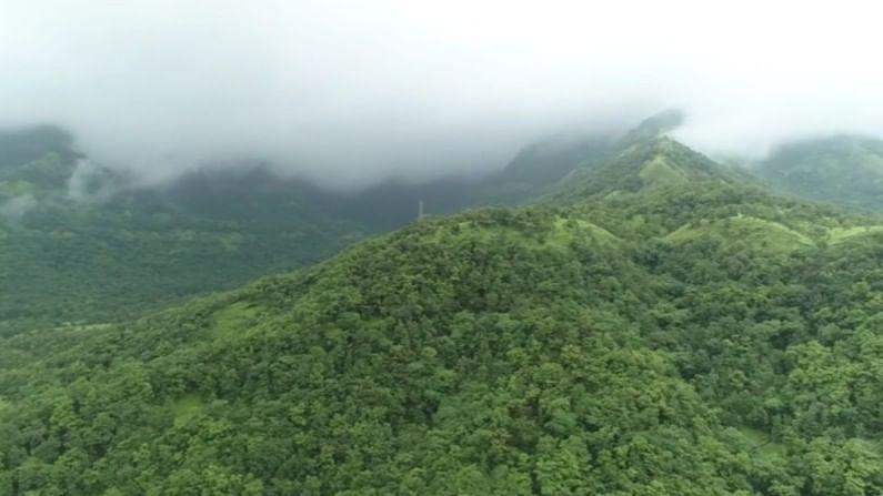 सह्याद्रीच्या कुशीत वसलेल्या कुंभवडे गावाचं निसर्ग सौंदर्य खुललं आहे.