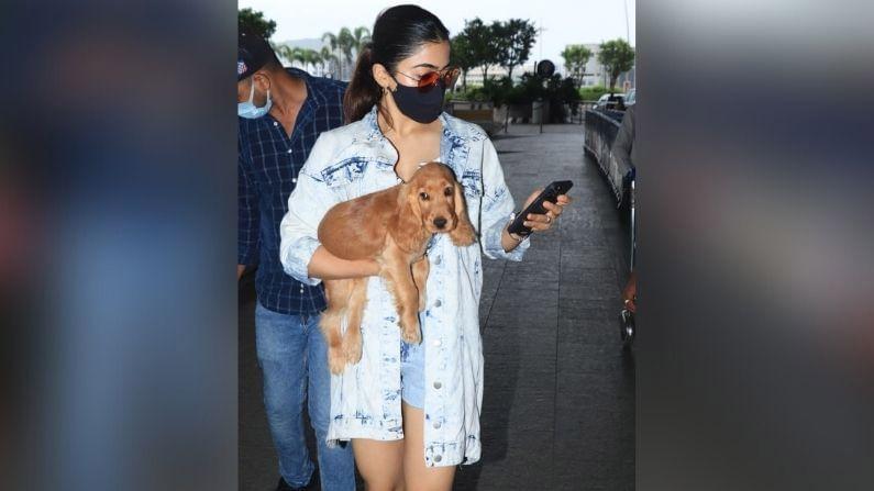 यावेळी मुंबई विमानतळावर रश्मिकाचे श्वानप्रेम पाहायला मिळाले.