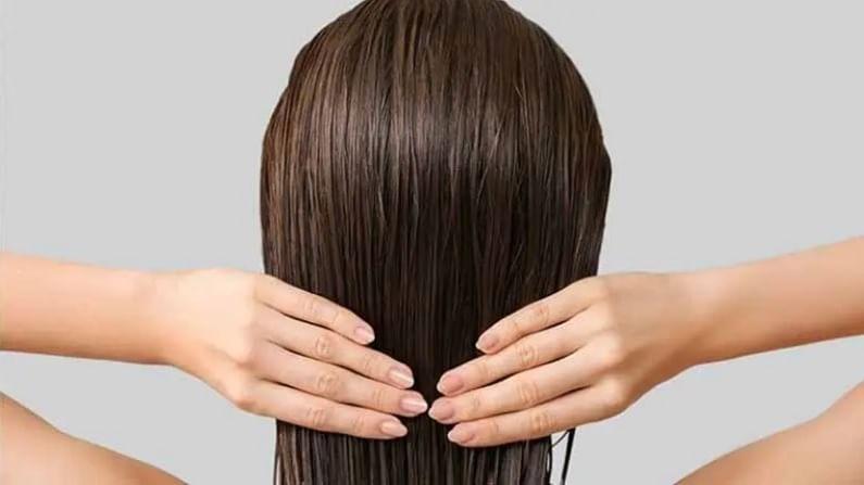 पावसाळ्यात केसात केसांची विशेष काळजी घ्यावी लागते. अशा परिस्थितीत महिलांनी केसांमध्ये तेल चांगले लावावे. यामुळे केस कोरडे आणि निर्जीव होणार नाहीत. पावसाळ्याच्या दिवसात नारळ तेलात कापूर मिसळा आणि कोमट झाल्यावर केसांमध्ये मालिश करा.