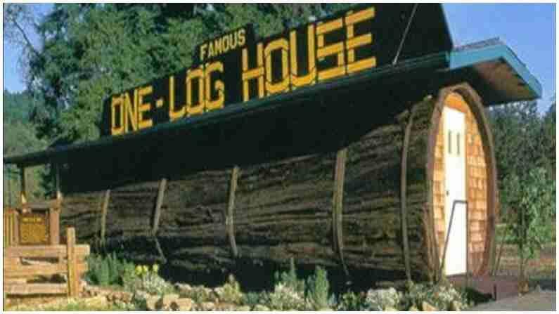 हे घर 'वन लॉग हाऊस' म्हणून ओळखले जाते. अमेरिकेतील हे घर 2000 वर्ष जुन्या झाडाच्या खोडात बांधले गेले आहे. याच्या आत एक 13 फूट लांब जागा आहे, ज्यामध्ये एक शयनकक्ष बनविला गेला आहे आणि आवश्यक असलेल्या सर्व वस्तू या घरात आहेत.