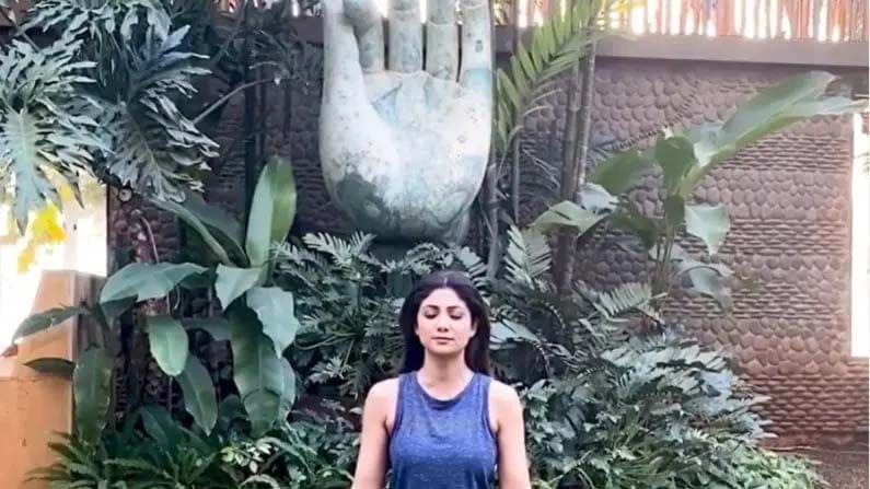 शिल्पाच्या बागेतही आर्ट वर्कही केले गेले आहे. तिच्या बागेत हाताचा भव्य पुतळा आहे. ज्याखाली खाली बसून शिल्पा अनेकदा योगा करताना दिसते.