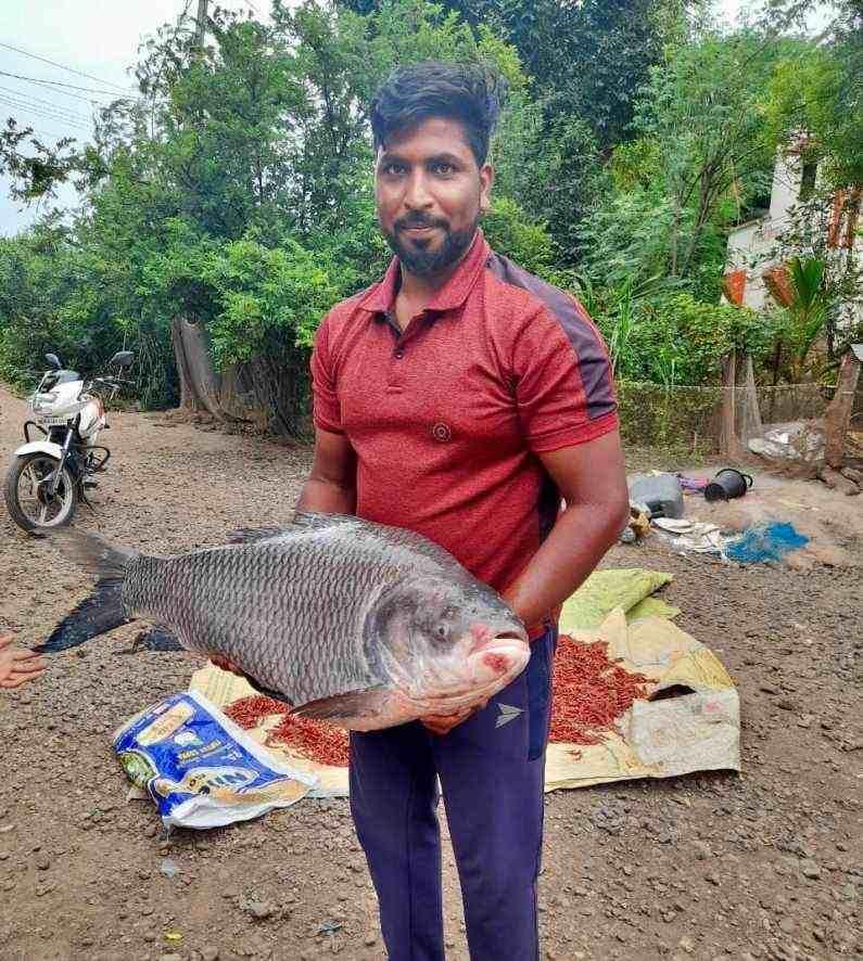 त्यानंतर आज (30 जुलै) दौंड तालुक्यातील सोनवडी या ठिकाणी हा 20 किलो वजनाचा मासा सापडला. मागील काही दिवसात सोनवडी बंधाऱ्यावर मोठ्या प्रमाणात मासेमारी होत आहे. त्यामध्ये अनेक जातीचे मासे आढळून आले आहेत.