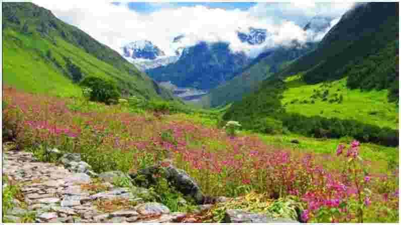 युमथांग घाटी : युमथांग व्हॅली, ज्याला 'व्हॅली ऑफ फ्लॉवर्स' असेही म्हणतात, सिक्कीमची राजधानी गंगटोकपासून 148 किमी अंतरावर आहे. येथे लाल, पिवळा, पांढरा, केशरी, जांभळा इत्यादी रंगांची फुले दिसू शकतात. ही दरी हिमालय पर्वतांनी वेढलेली आहे आणि अतिशय सुंदर आहे.