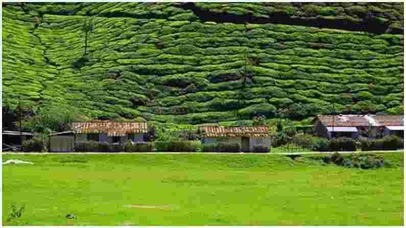 केरळ आपल्या सौंदर्यासाठी भारतभर प्रसिद्ध असले तरी मुन्नारचे टी गार्डन हे येथील सर्वात सुंदर ठिकाणांपैकी एक मानले जाते. येथील सुंदर दृश्य पर्यटकांना मोहित करतात.