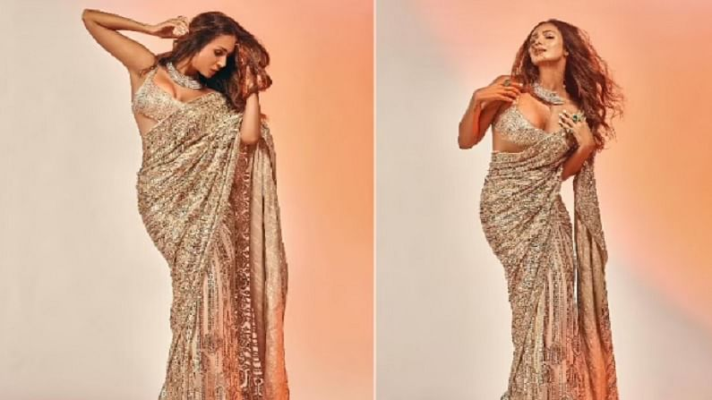 बॉलिवूड अभिनेत्री मलायका अरोरा करोडो हृदयांवर राज्य करते. मलायका चाहत्यांसाठी तिचे सुंदर फोटो सोशल मीडियावर नेहमीच शेअर करत असते.
