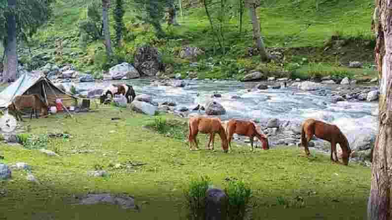 काश्मीरला त्याच्या सौंदर्यामुळे पृथ्वीवरील स्वर्ग मानले जाते. हे भारतातील सर्वात लोकप्रिय पर्यटन स्थळांपैकी एक आहे. निसर्गाने ही जागा हिरवीगार जंगले आणि भव्य मैदानांनी बहाल केली आहे. येथे अशी अनेक ठिकाणे आहेत जी पर्यटकांना भुरळ घालतात.