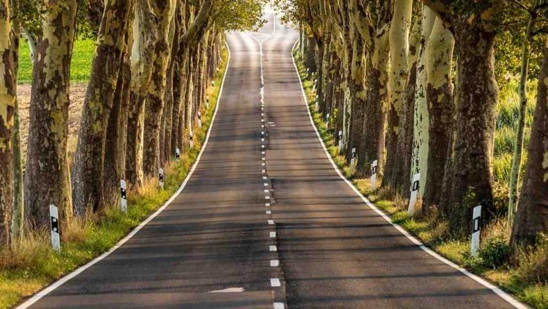 आपण रस्त्यावरुन गाडीने प्रवास करत असताना सफेद रेषा पाहतो. काही ठिकाणी सलग सफेद रेष असते, तर काही ठिकाणी सफेद रेष तुटक-तुटक असते. काही ठिकाणी पिवळया रंगाची रेष असते. मात्र, या रेषांचा नेमका अर्थ आपल्याला माहिती नसतो.