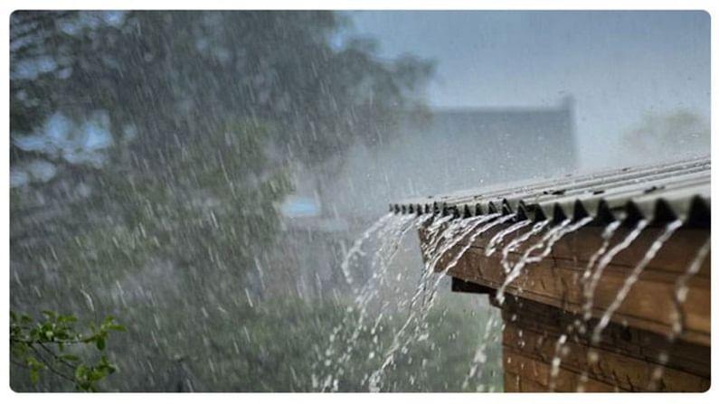 rainsnnnnnshiknnnnn