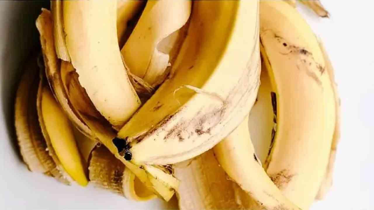 चेहऱ्यावरील सुरकुत्यांची समस्या दूर करण्यासाठी आपण केळीच्या सालावर थोडा मध मिक्स करून चेहऱ्याला लावू शकता. ज्यामुळे सुरकुत्यांची समस्या दूर होण्यास मदत होईल.