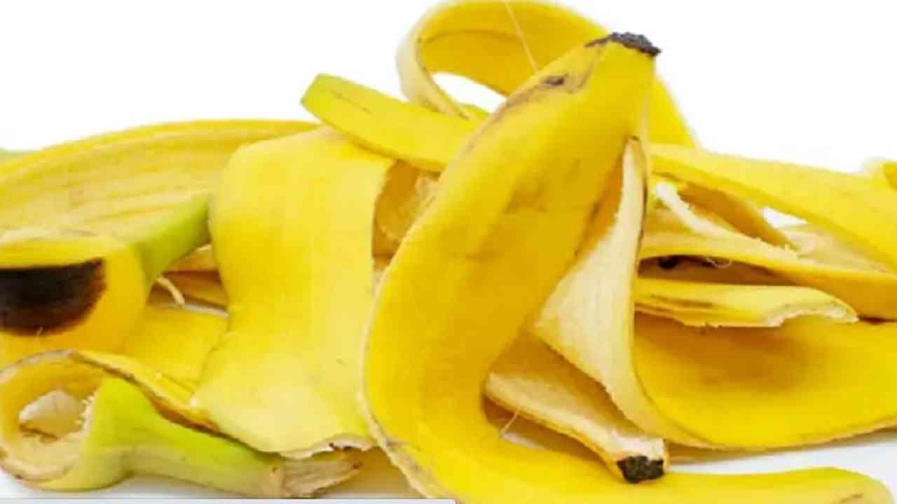 आपल्या डोळ्यांखाली डार्क सर्कल्स तयार झाली असतील तर ती समस्या दूर करण्यासाठी आपण केळीची साल वापरू शकतो. यासाठी केळीच्या सालीमध्ये कोरफड मिक्स करा आणि ते चेहऱ्यावर लावा. 10 मिनिटांनी पाण्याने चेहरा धुवा. आठवड्यातून 3 दिवस हा उपाय करून पहा.