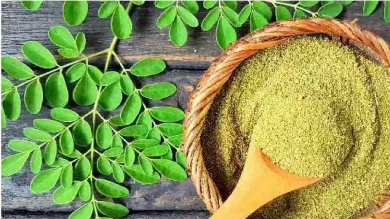 शेवग्याच्या झाडांची पाने आरोग्यासाठी फायदेशीर असतात. त्यामध्ये लोह, व्हिटॅमिन ए, सी आणि मॅग्नेशियम असते.  रोज सकाळी रिकाम्या पोटी 1 चमचे शेवग्याच्या पानांची पावडर खाल्ला पाहिजे.