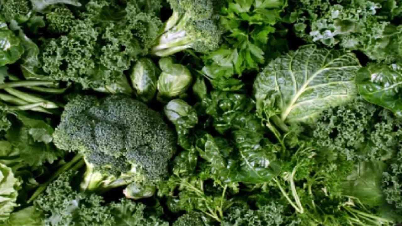 हिरव्या पालेभाज्या खाणे आपल्या आरोग्यासाठी अत्यंत फायदेशीर आहे. हिरव्या पालेभाज्यांमध्ये अनेक प्रकारचे पोषक घटक असतात जे आपल्या निरोगी आरोग्यासाठी आवश्यक आहेत. साधारण एका दिवसामध्ये किमान दोन तरी हिरव्या भाज्या आहारात घेतल्या पाहिजेत.