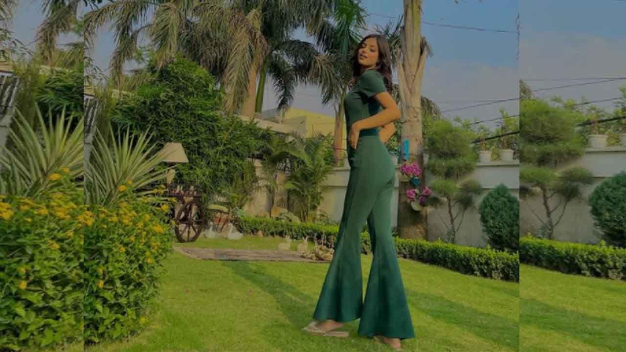 2021 मध्ये, हरनाज संधू पंजाबी चित्रपट 'यारा दिन पु बारां' आणि 'बाई जी कुटांगे'मध्ये दिसली होती. हरनाज 21 वर्षांची आहे आणि तिने 'मिस इंडिया युनिव्हर्स 2021' हा किताब जिंकला आहे. स्पर्धा जिंकण्याव्यतिरिक्त, हरनाज तिची मास्टर्स डिग्री पूर्ण करत आहे.