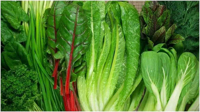 पालेभाज्या - अनेकदा आहारात हिरव्या भाज्यांचा समावेश करण्यास सांगितले जाते. ब्रोकोली, पालक सारख्या भाज्यामध्ये अनेक पोषकतत्व असतात. हिरव्या भाज्यांमध्ये व्हिटॅमिन के, बीटा-कॅरोटीन, फोलेट आणि ल्यूटिन असतात . हिरव्या पालेभाज्यांमध्ये असणारे घटक मेंदूला निरोगी ठेवण्यात मोठी भूमिका बजावतात.