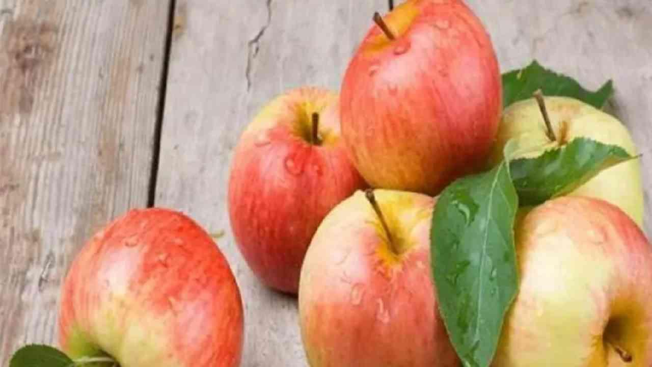 सफरचंद - सफरचंद आरोग्याप्रमाणेच आपल्या दातांसाठी देखील खूप फायदेशीर आहे. ते पोकळी निर्माण करणारे बॅक्टेरिया देखील कमी करतात आणि दात स्वच्छ आणि निरोगी ठेवतात.