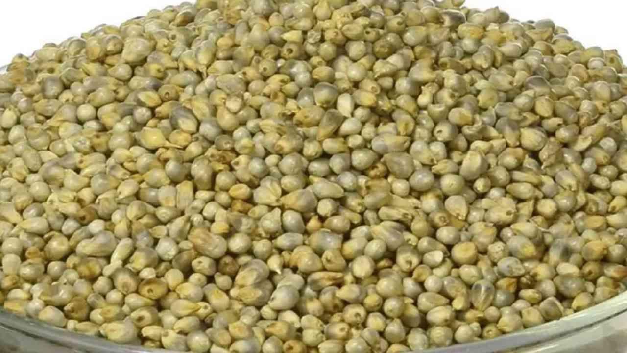 बाजरीच्या पिठामध्ये प्रथिने, फायबर, मॅग्नेशियम, लोह आणि इतर पोषक घटक असतात. हे जास्त खाण्यापासून प्रतिबंधित करते आणि पोट बराच वेळ भरून ठेवते.