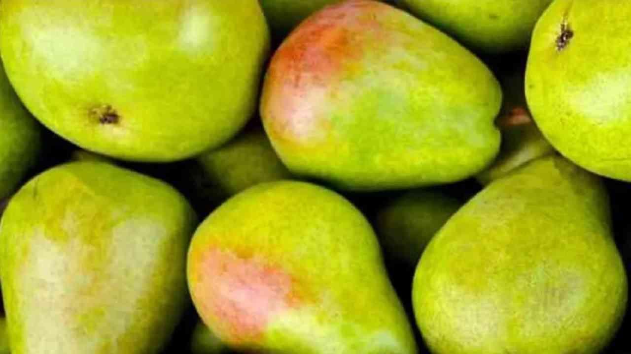 कॅलरी वजन कमी करण्याचे मुख्य स्त्रोत आहे. या फळामध्ये प्रति 100 ग्रॅममध्ये सुमारे 56 कॅलरीज असतात आणि वजन कमी करण्यासाठी फायदेशीर आहे.